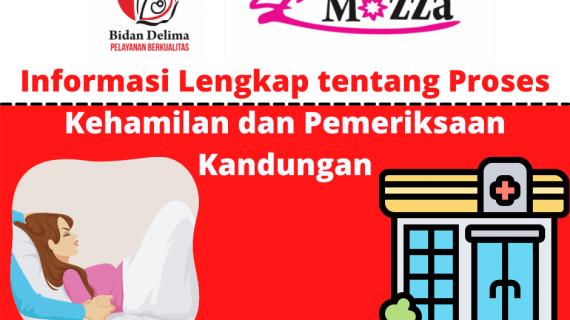 Informasi Lengkap tentang Proses Kehamilan dan Pemeriksaan Kandungan